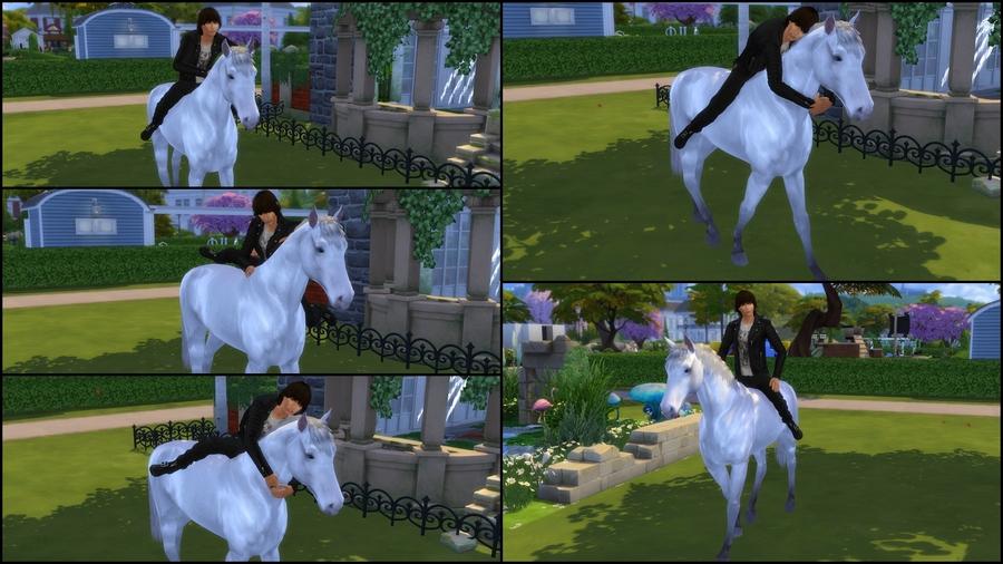 Pose 1 (cheval)