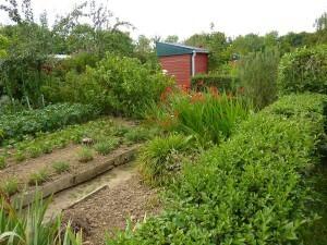 Jardins-familiaux-0004.jpg