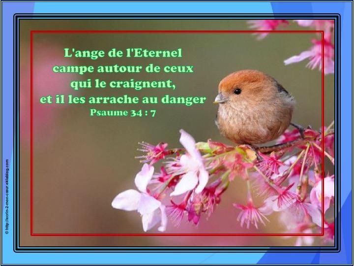 Il les arrache au danger - Psaumes 34 : 7
