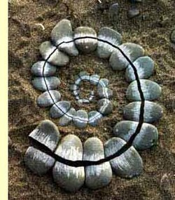 Les spirales...
