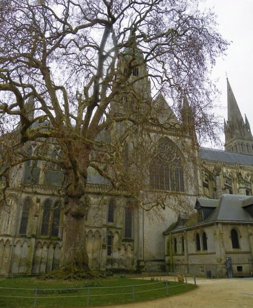 La cathédrale Notre-Dame de Bayeux