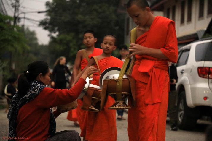 Bouddhisme, Les moines et novices de Luang Prabang