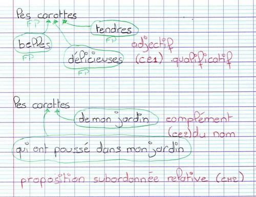 1. AMF1 Les constituants du groupe nominal