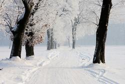 Winter- 3/12/14