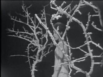 1er janvier 1966 / JEUNESSE OBLIGE
