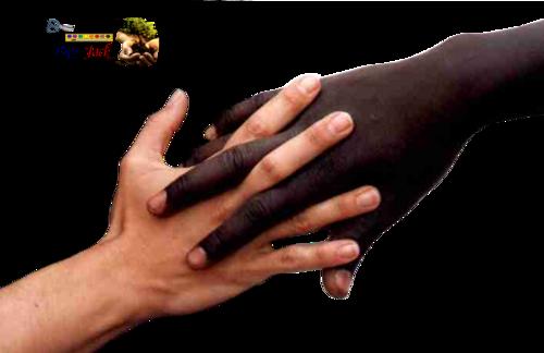 -- Des Mains --