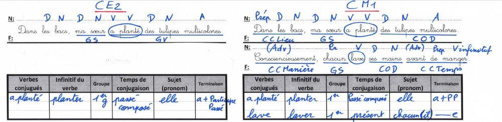Correction du rituel d'étude de la langue