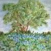 l\'arbre aux bleuets