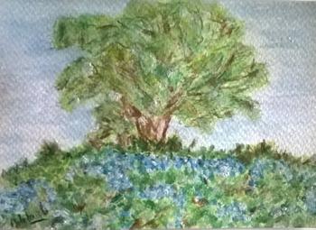 l'arbre aux bleuets