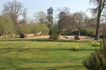 zoo cologne d50 2012 004