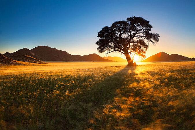 admirez-le-magnifique-desert-de-namibie-grace-a-ces-fantastiques-photographies40
