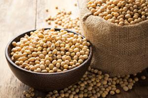 Quel lien entre le soja et le cancer ?