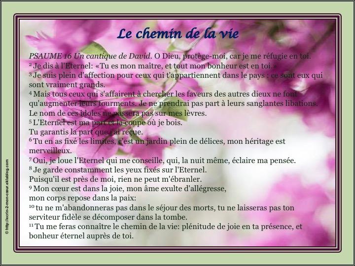 Le chemin de la vie - Psaumes 16
