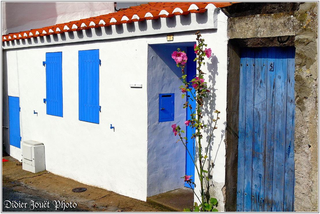 85 - Vendée / Ile d' Yeu