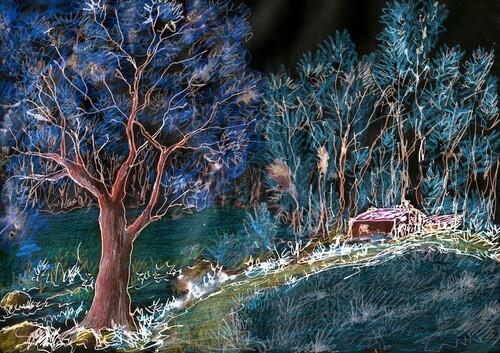 - Histoire d'un arbre toujours en retard -