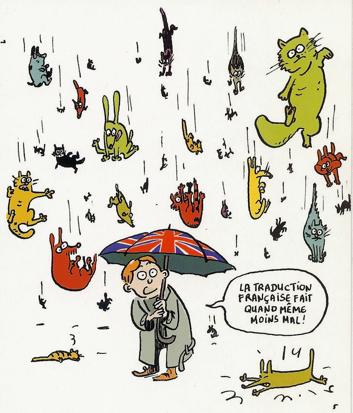 Raining Cats And Dogs Expression In French