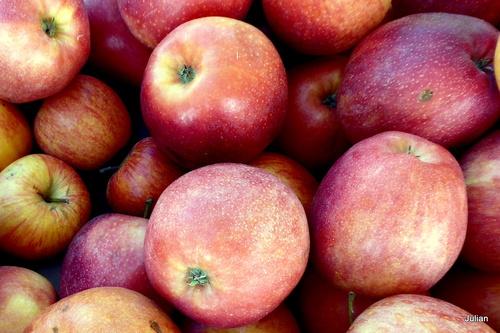 Qui croque la pomme ?