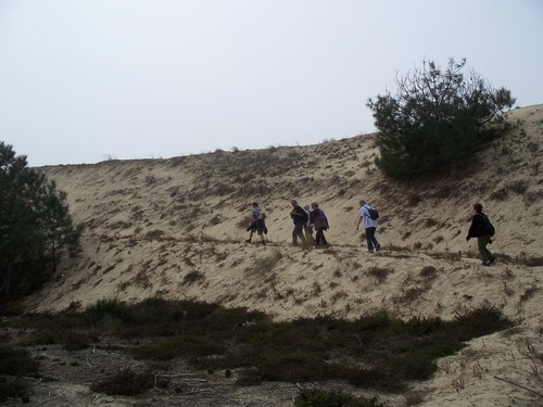 A l'assaut de la dune