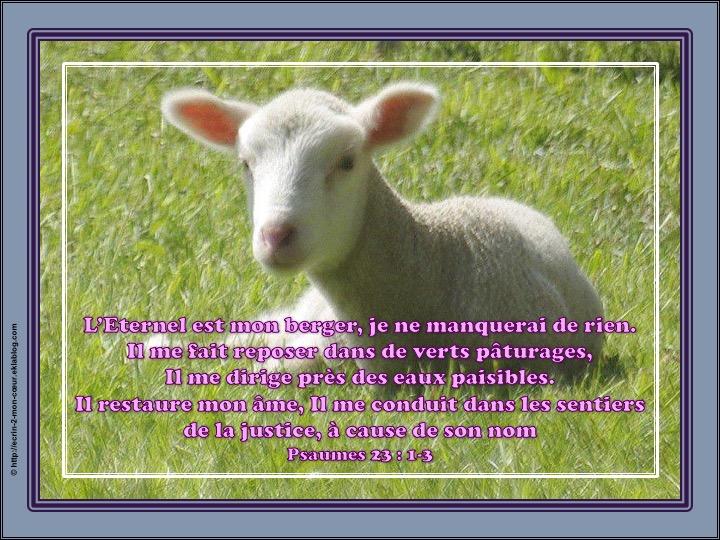 L'Eternel est mon berger - Psaumes 23 : 1-3
