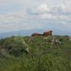 Plateau de Trizac