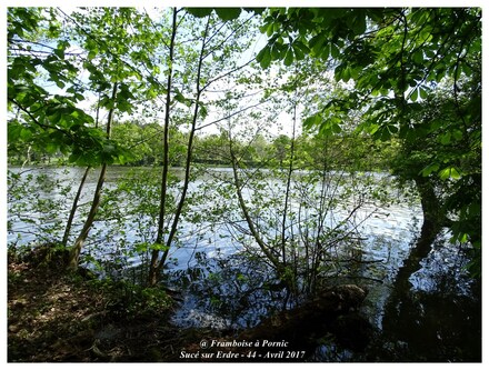 Sucé sur Erdre - Loire Atlantique