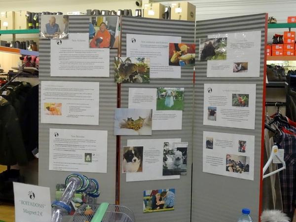 """L'association """"Zen et Zoo"""" était présente au marché de Noël de Gamm Vert..."""