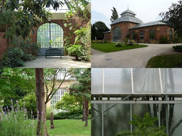 Botanique de Metz 9 - 16 07 10
