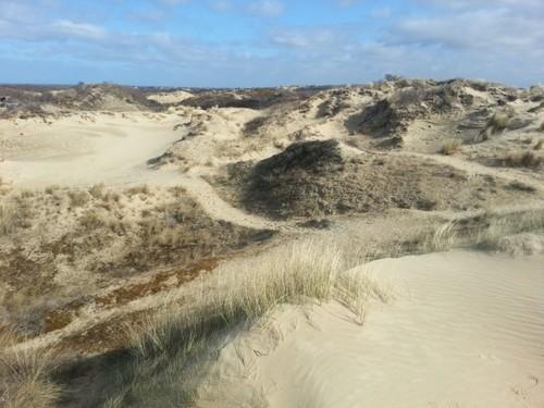 Promenade dans les Dunes