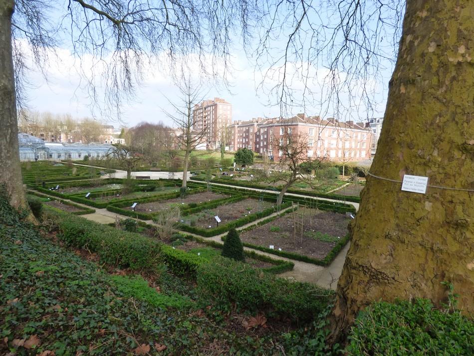 Le printemps au Jardin des Plantes