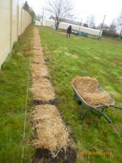Jardinage départ saison 2014