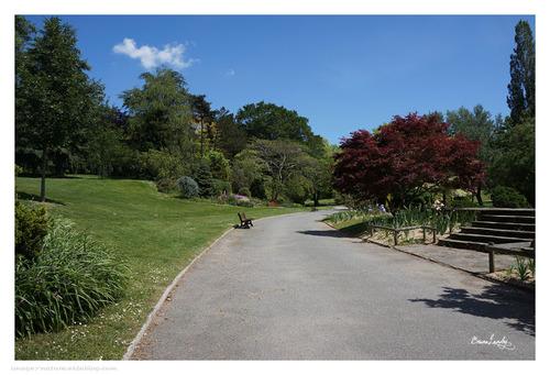Parc de la Beaujoire Nantes