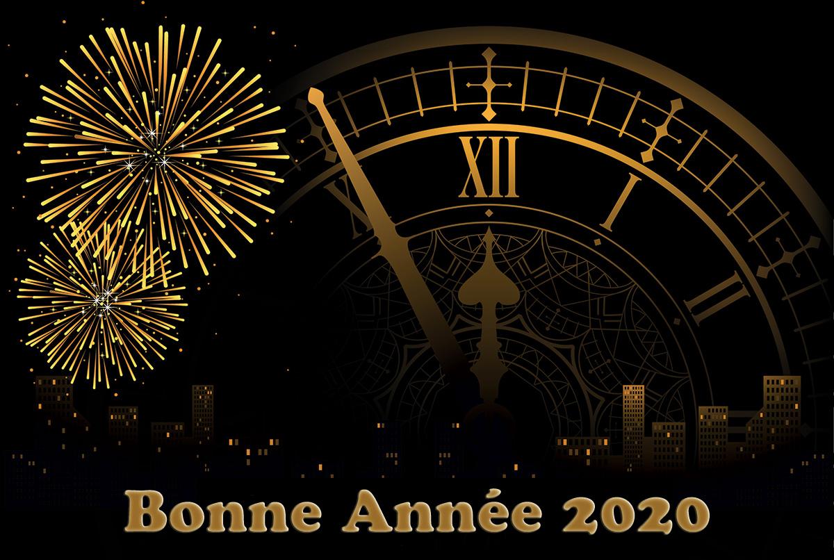 Bonne Année 2020 Une Fleur De Paris