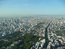 MF au Japon (5)