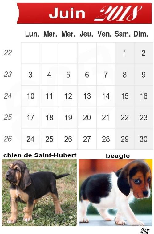 Mon calendrier 2018 : Mois par mois