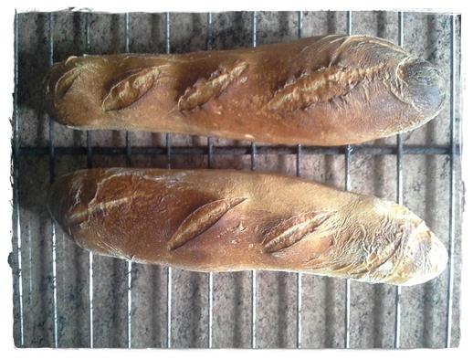 """Ce quotidien ...""""le pain"""" .."""