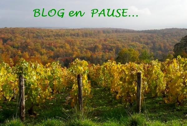 Quelques jours de vacances pour la blogueuse...