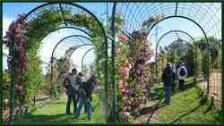 Parc Floral 19 mai