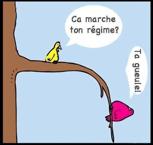 Humour potache !!!