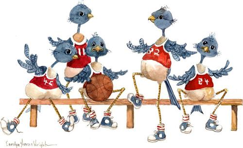 Oiseaux rigolos (suite)