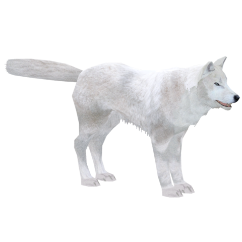 File:Arctic Wolf (Titan).png