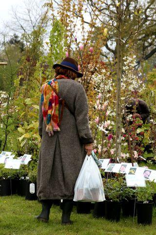 Fêtes des plantes en Belgique : 2. Les Jardins d'Aywiers