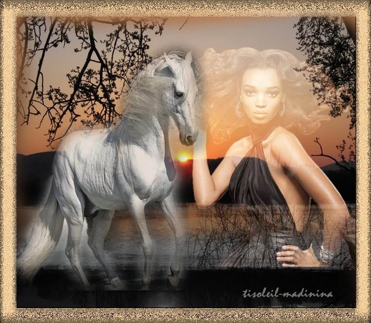 Defi chevaux
