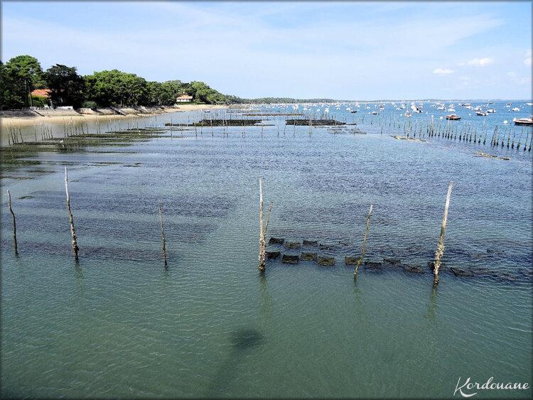 Parc à huîtres Lège Cap Ferret