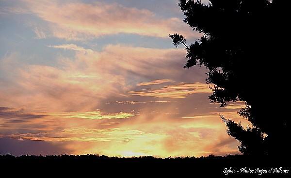 coucher soleil - novembre (blog)