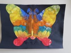 Les papillons en symétrie