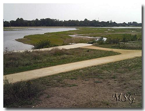 Loire plus verte