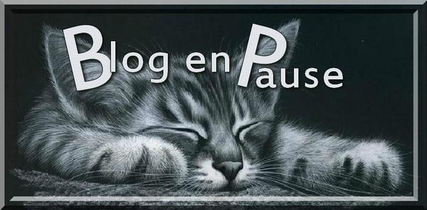 """Résultat de recherche d'images pour """"blog en pause pour quelques jours"""""""