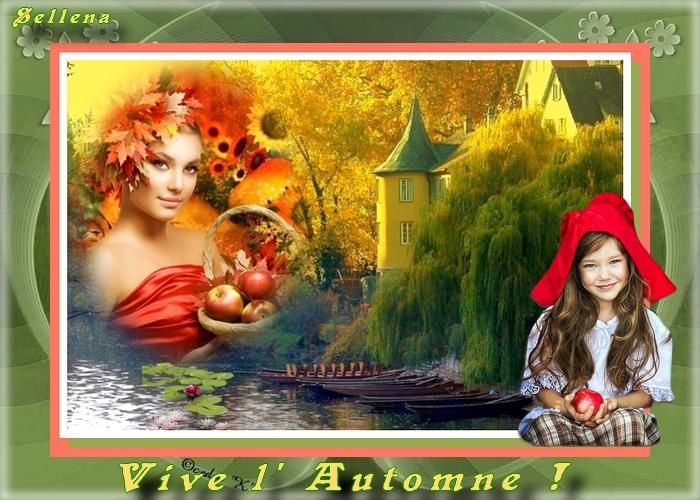 **Beautés d' automne**Cartes