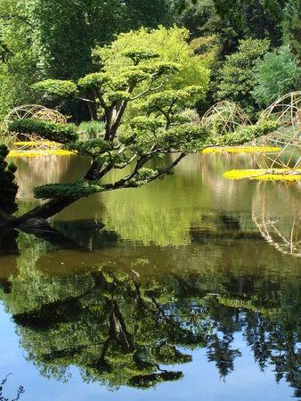 Jardin_oriental_de_Maulevrier_49__91_