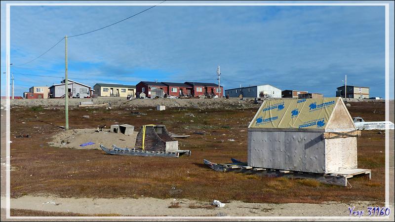 Le ton est donné : écriture syllabique, traîneaux, cabanes mobiles, chiens, fourbi un peu partout .... - Gjoa Haven - King William Island - Nunavut - Canada